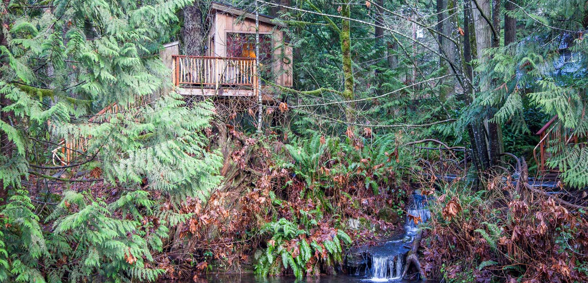 TreeHouse Photos at Treehouse Point in Fall City Washington