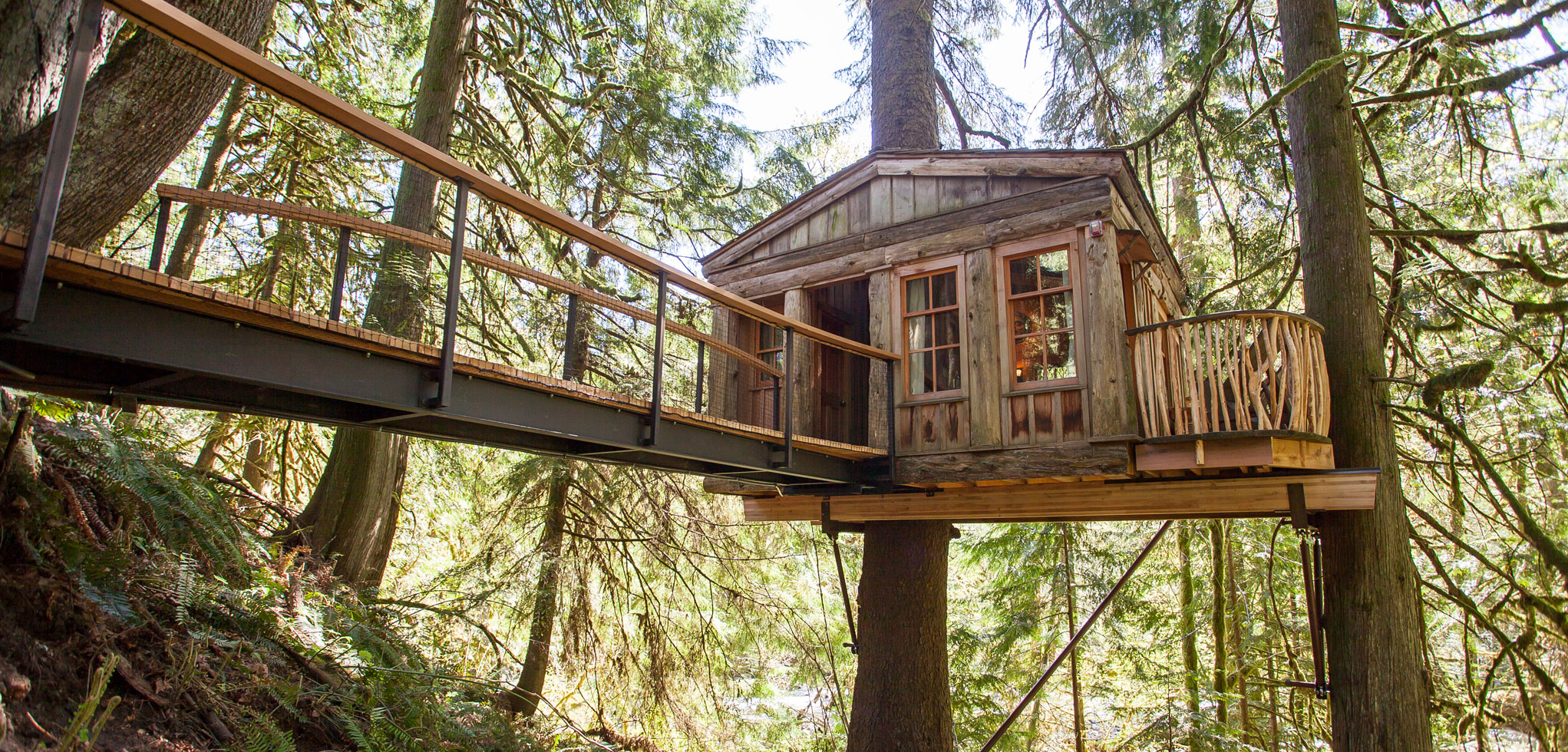 Treehouse Point in Fall City Washington