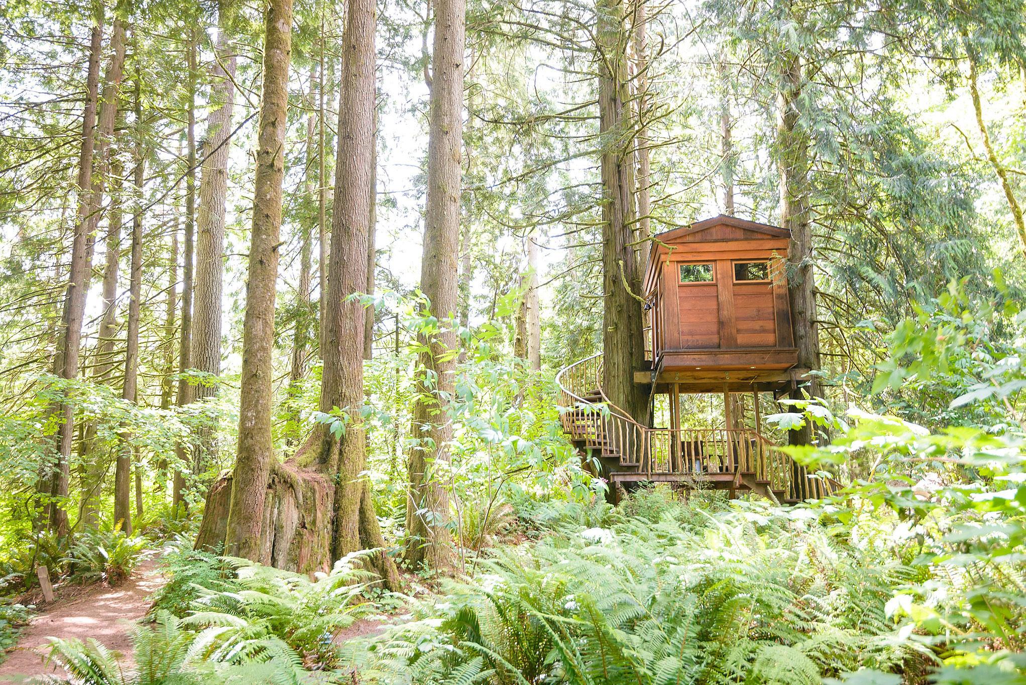 Treehouse Fall City Wa Part - 26: TreeHouse Photos At Treehouse Point In Fall City Washington