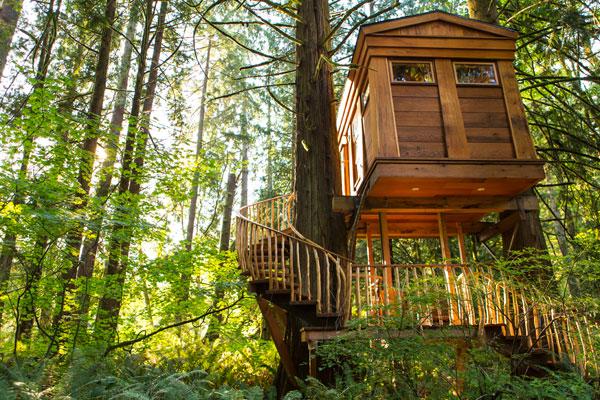 Treehouse Point Fall City Washington Unusualstay