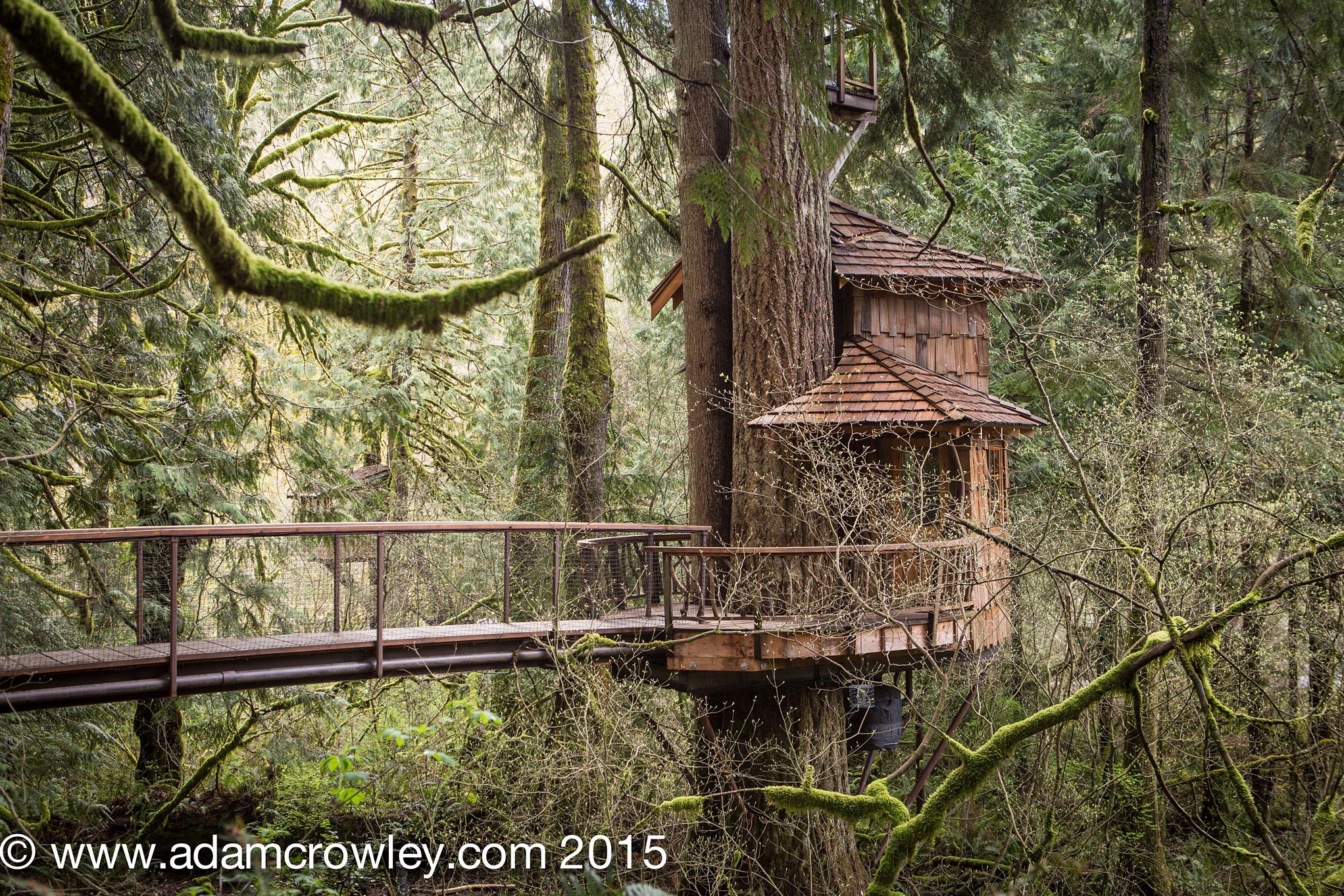 treehouse masters treehouse point. Wonderful Point TreeHouse Photos At Treehouse Point In Fall City Washington For Masters O