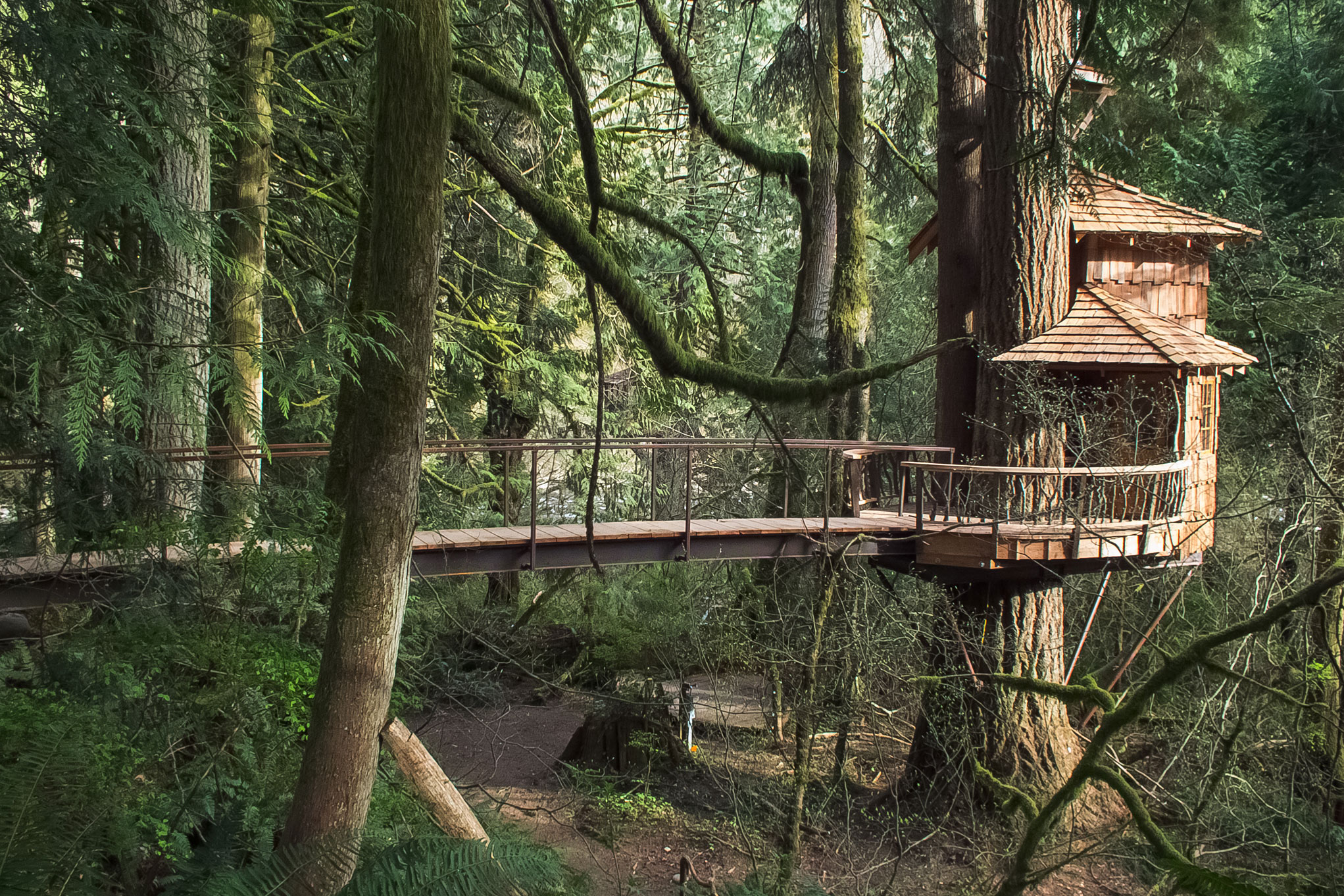 treehouse masters treehouse point. Unique Point Lodging At Treehouse Point In Fall City Washington On Masters E