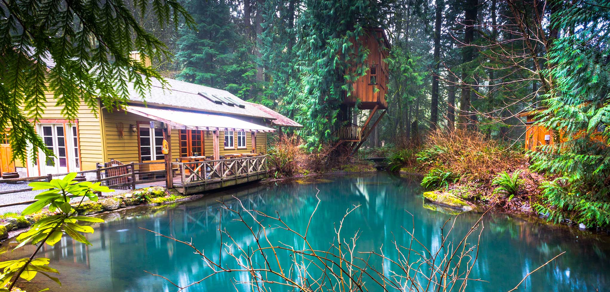 Plan your Event at Treehouse Point in Fall City Washington