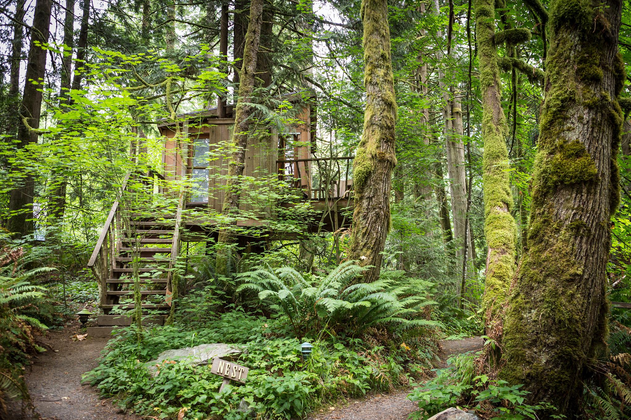 Treehouse Fall City Wa Part - 22: TreeHouse Photos At Treehouse Point In Fall City Washington