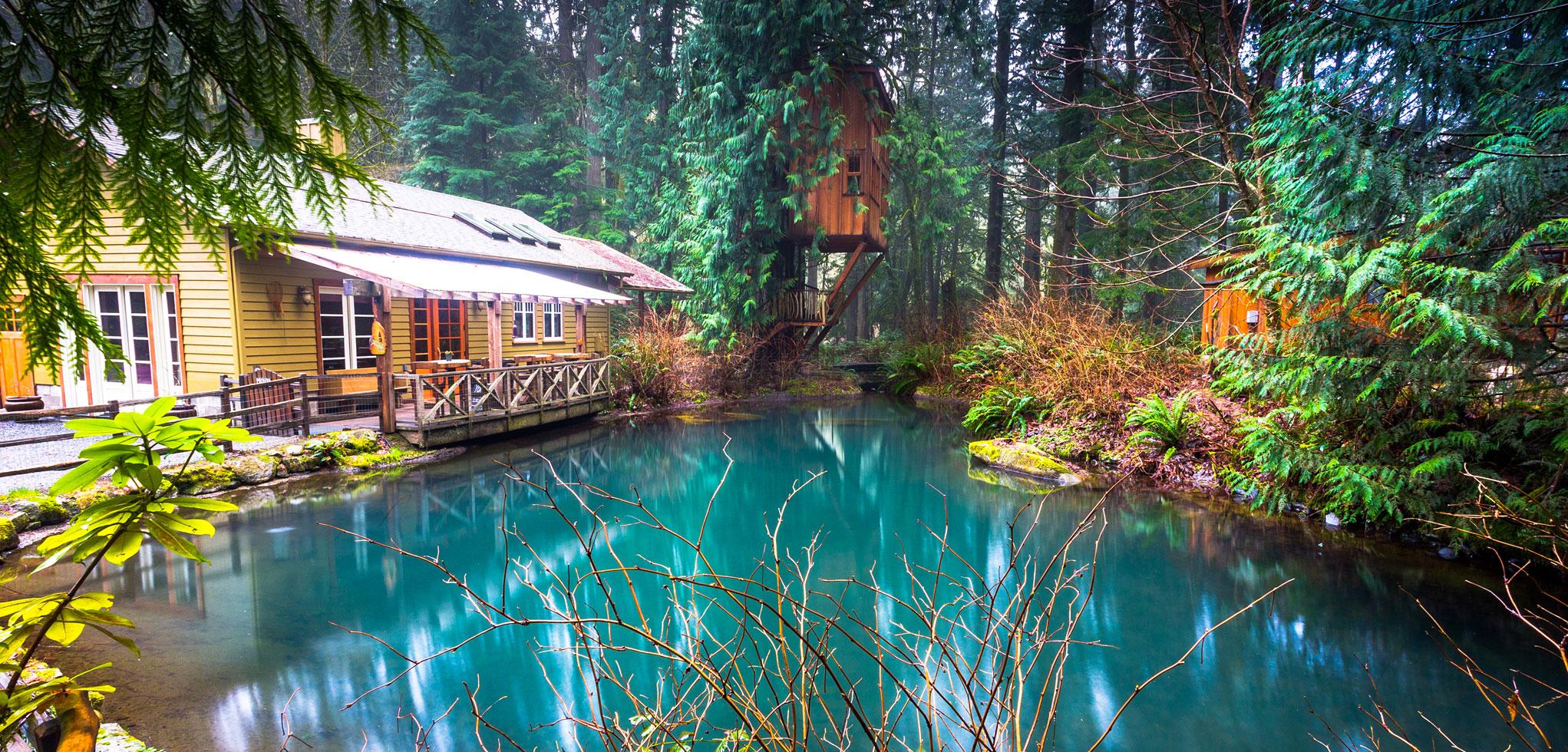Treehouse Fall City Wa Part - 38: TreeHouse Photos At Treehouse Point In Fall City Washington