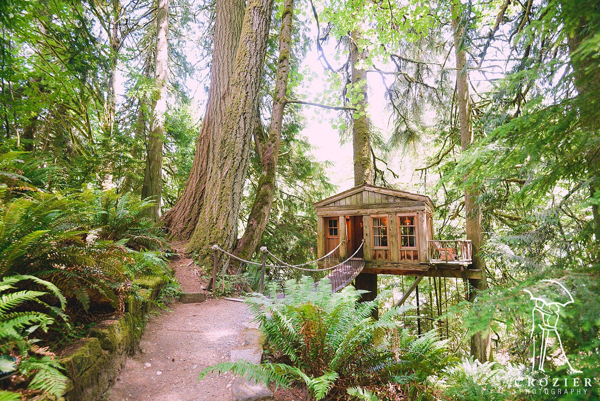 Charming Treehouse Fall City Wa Part - 6: TreeHouse Photos At Treehouse Point In Fall City Washington