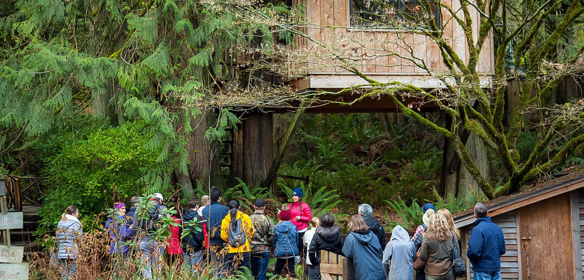 Treehouse Point Fall City Part - 35: Treehouse Point In Fall City Washington