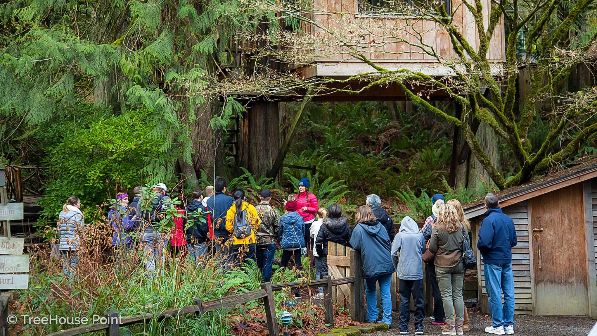 Tour Treehouse Point